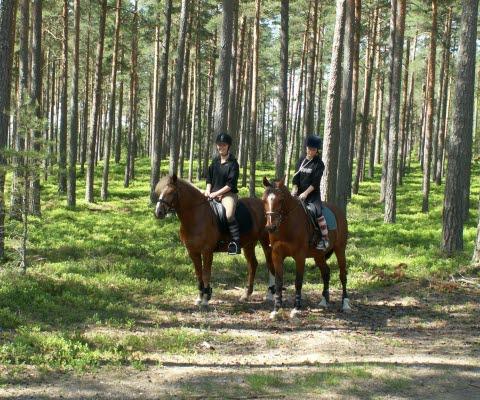 Två ryttare på varsina hästar som står still på en skogväg.