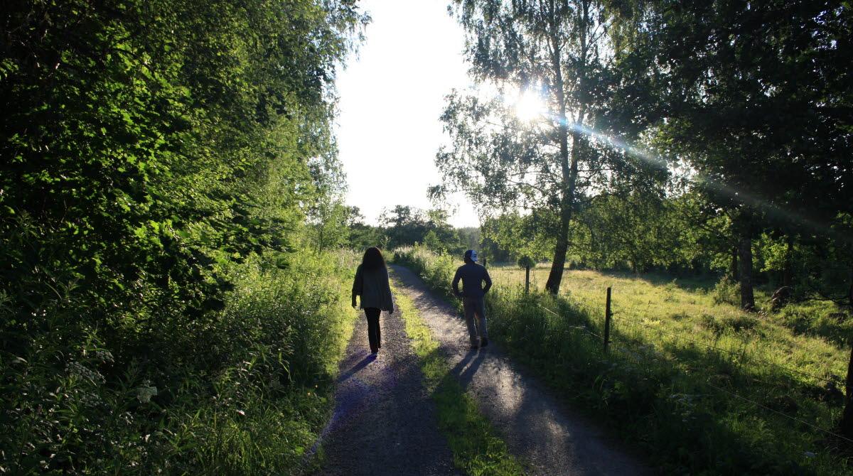 Sommarpromenad