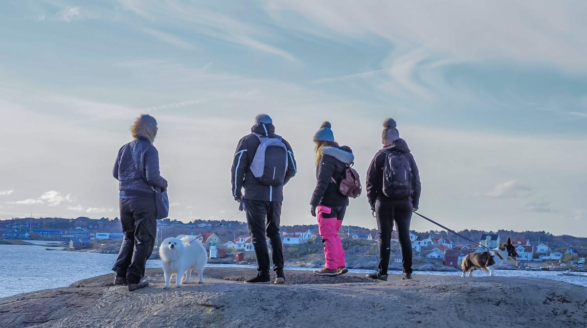 Björkö Hiking in vinter