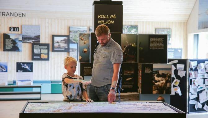 Inomhus på Naturum Kosterhavets nationalpark, utställningar