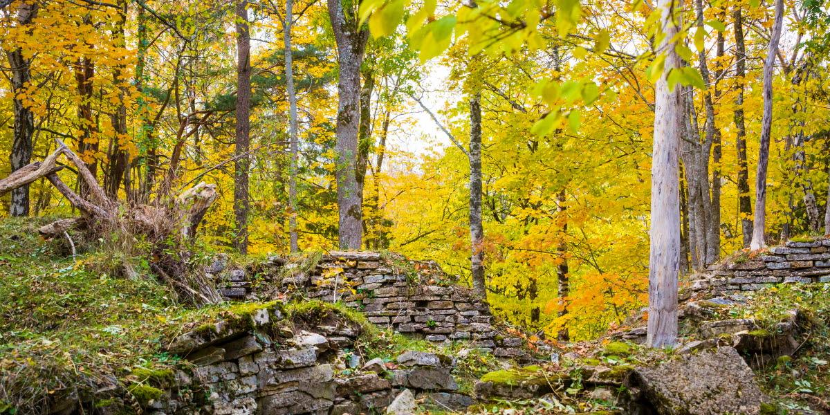 en bild på Silverfallets omgivning, historiska lämningar och fina höstträd