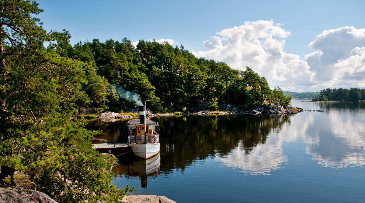 Ångbåten Herbert vid brygga, sommartid