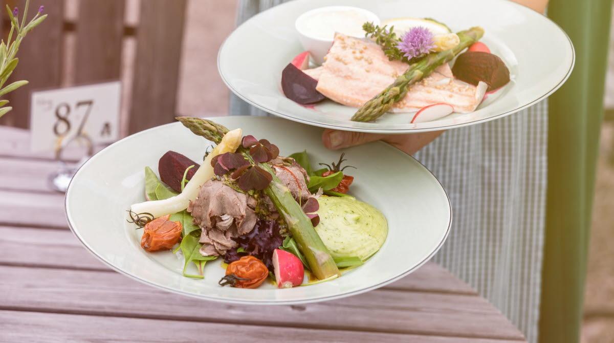 En person som håller upp två tallrikar med mat. En med kött och grönsaker en med lax.