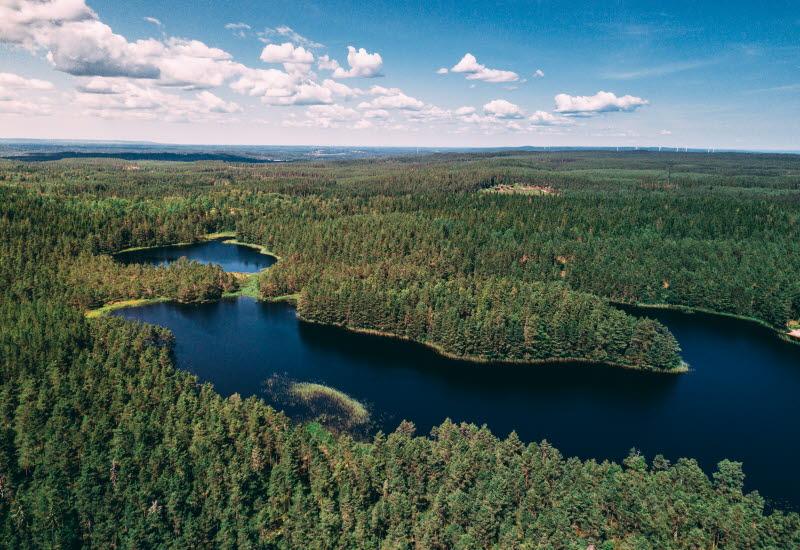 Flygbild på tät skog och en sjö