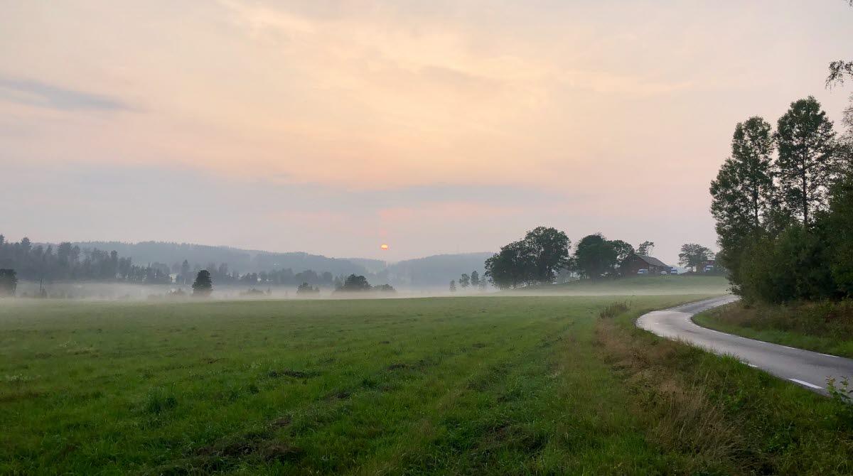 Ärtemark, dimmig solnedgång