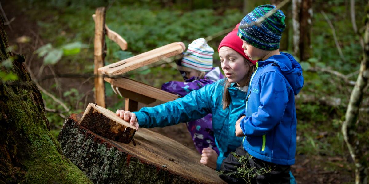 Mamma med två barn utforskar trädets ringar ute i skogen. De har alla mössor och friluftskläder på sig.
