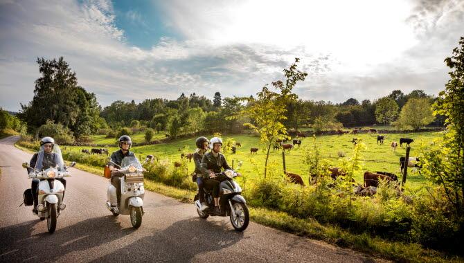 Fyra personer kommer åkandes på tre vespor genom ett grönskande landskap med blå himmel och en kohage med betande kor intill vägen.