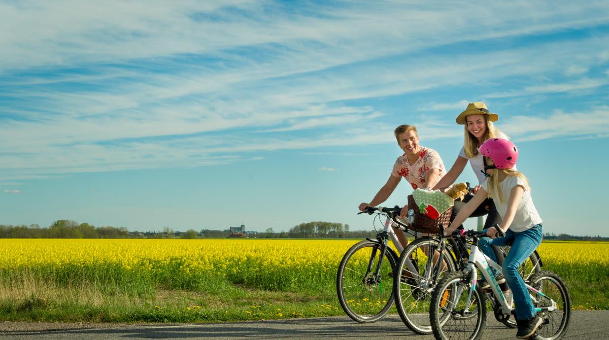 En familj som cyklar på Varaslätten med ett gult rapsfält i bakgrunden.