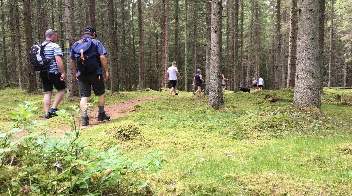 Vandra i Ulricehamn och upptäck naturen!