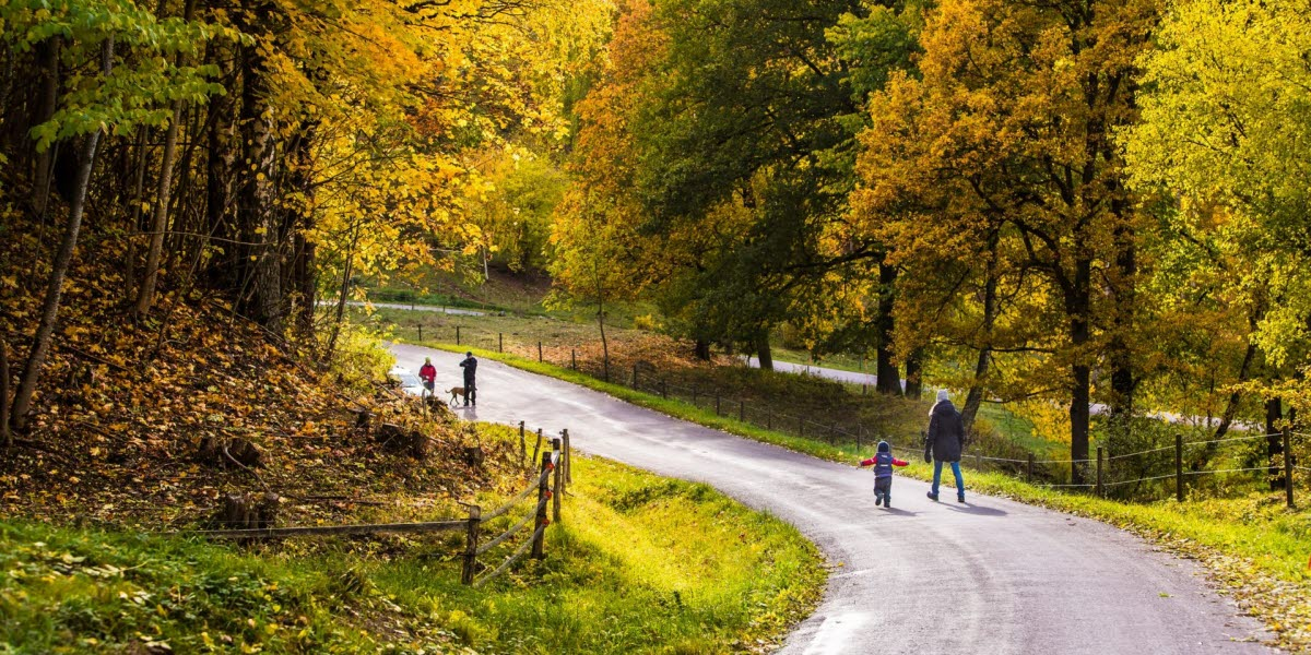 En familj som tar en promenad i den höst-färgade skogen.