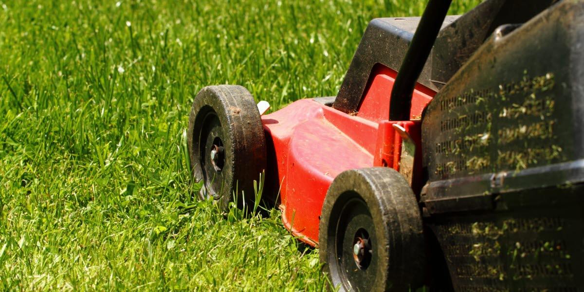 En gräsklippare som klipper gräs.