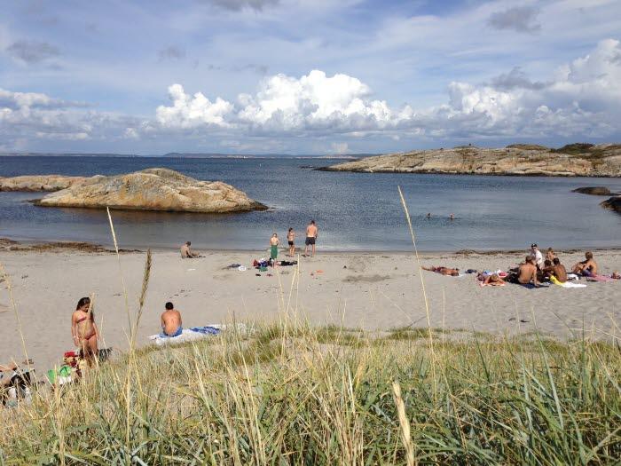 En solig dag vid Norrvikarna på Nordkoster. Folk sitter på stranden på badlakan, i förgrunden syns vass och högt gräs.