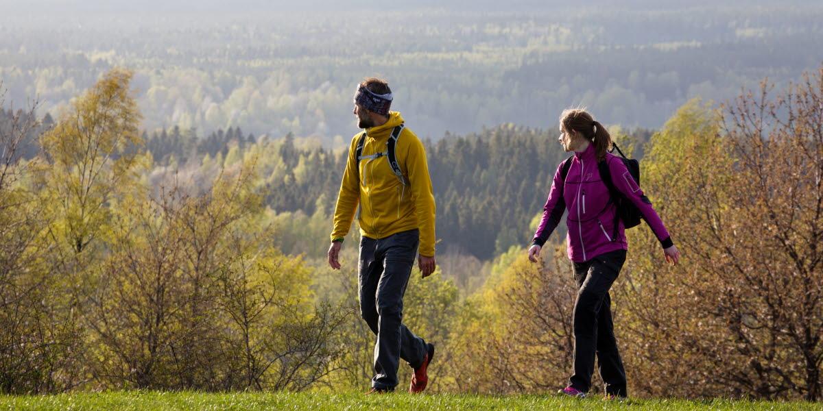 Par vandrar i hage med utsikt