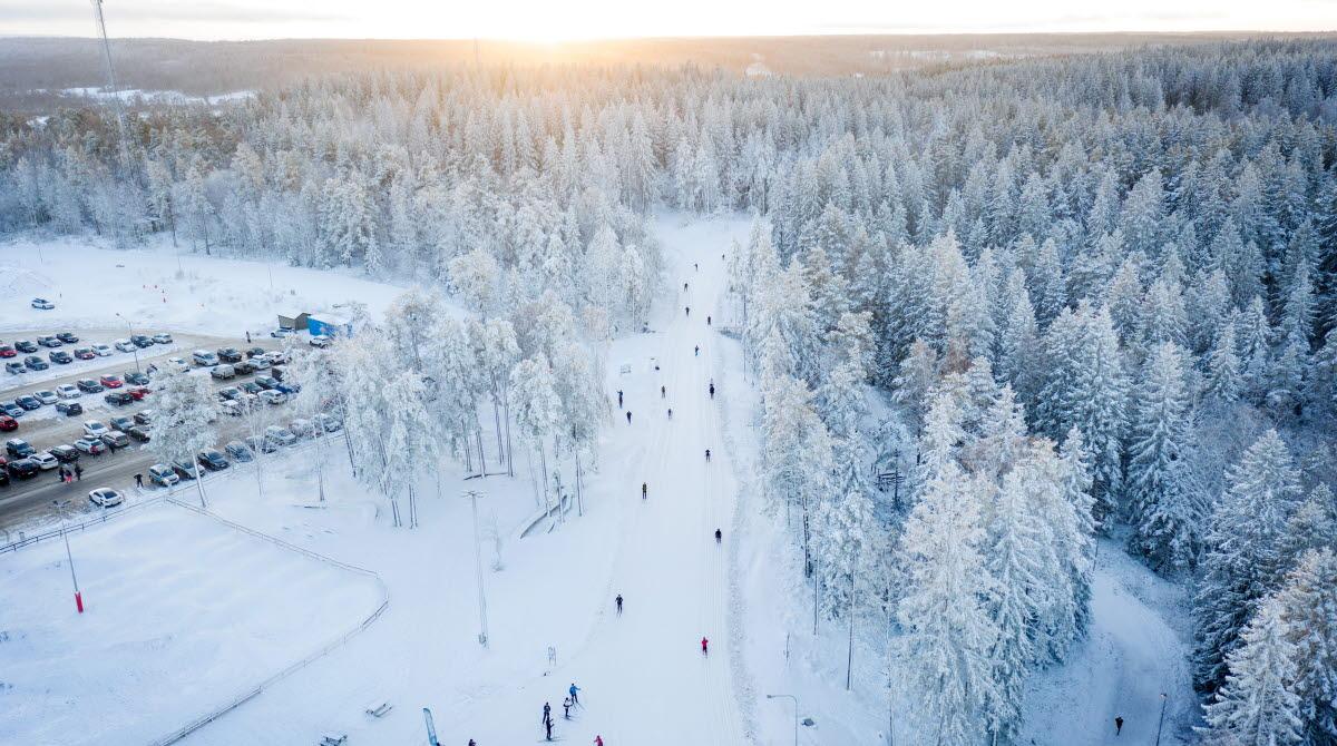 Drönarfoto över skidspåren en vinterdag på Billingen Skövde, solen är på väg ned bakom de snötäckta träden.