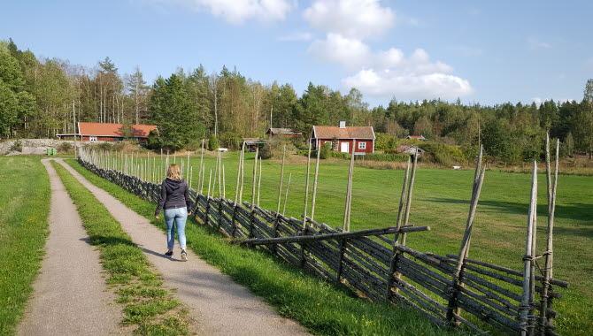 Vandrar vid Sandbäcken på Torsö.