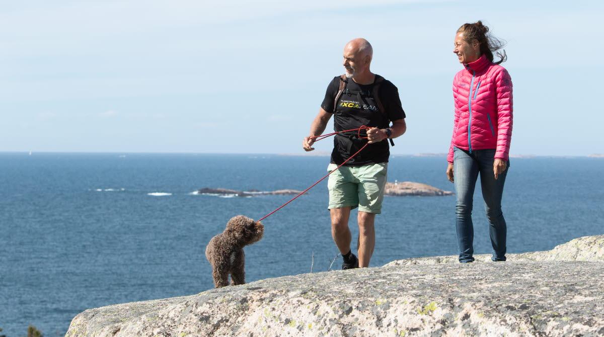 Vandra med hund på Ramsvik