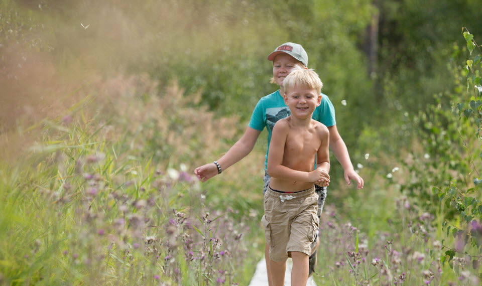 Two children walking on a path. Flowers and green gras around.