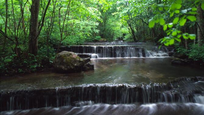Två låga vattenfall omgivna av ljusgröna träd.