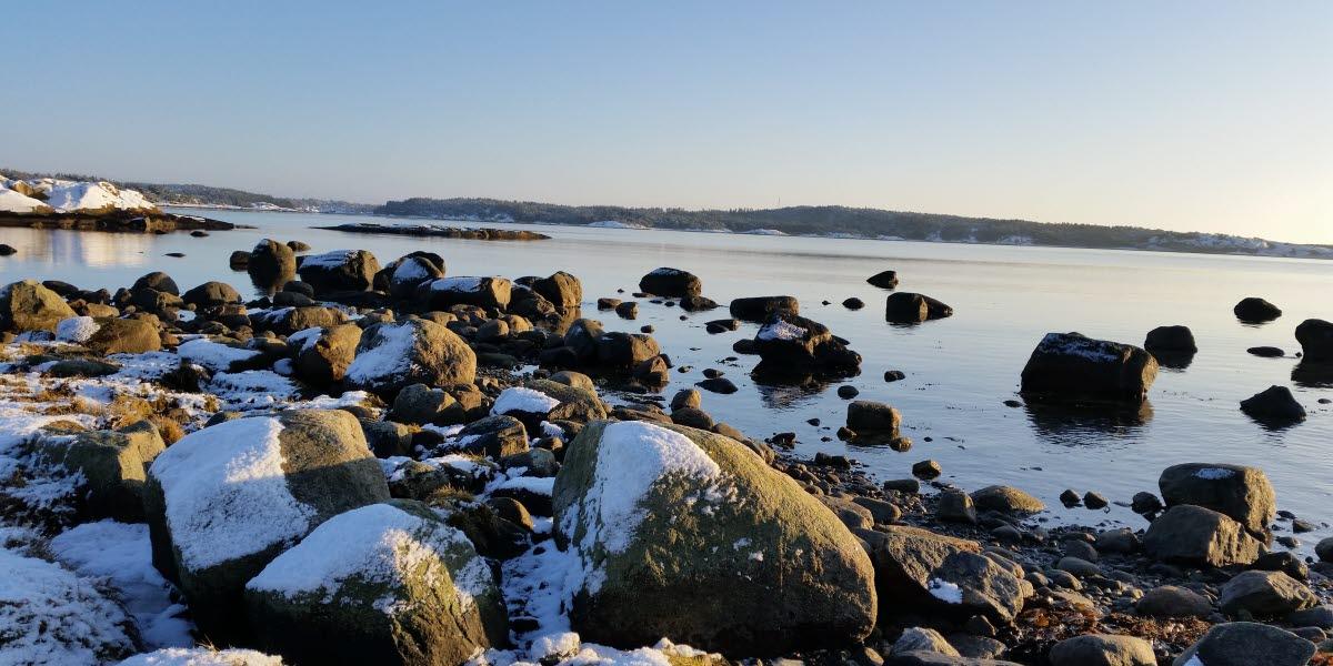 Vinterbild med snötäckta stenar vid havet