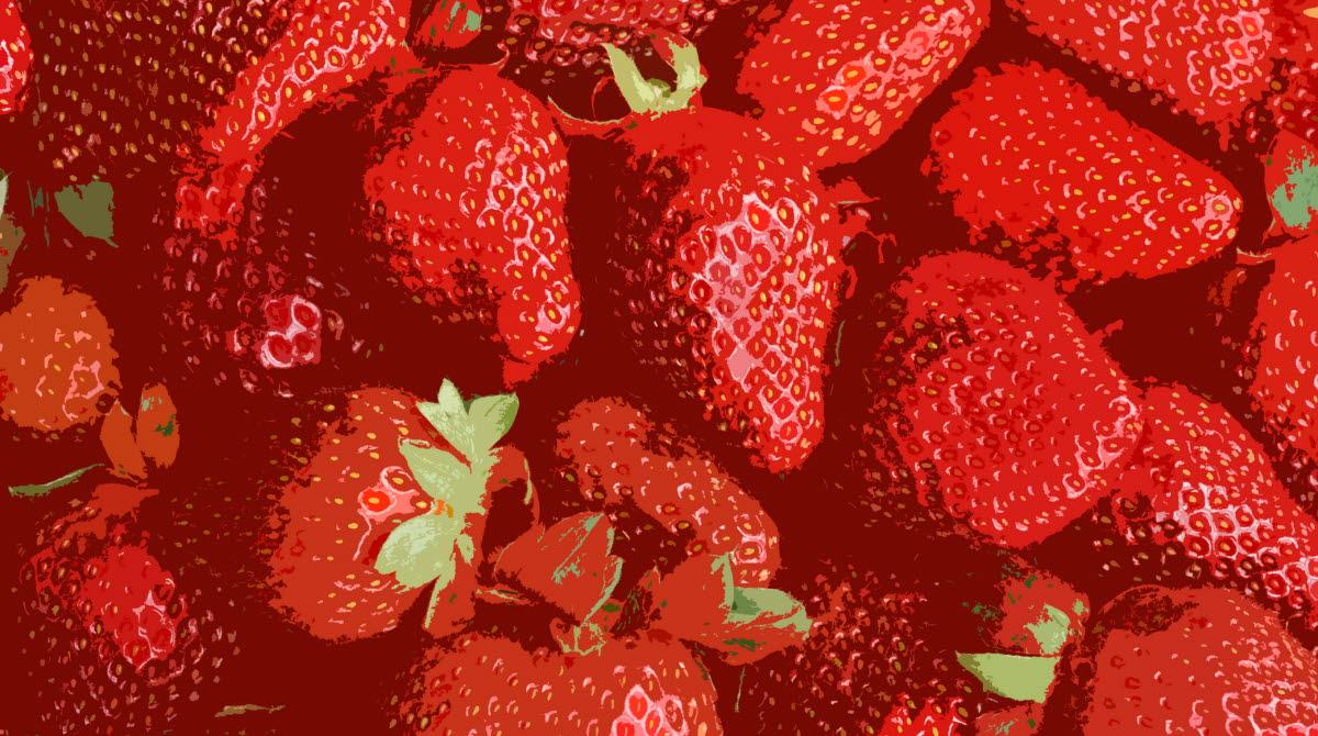 Illustrerade röda jordgubbar.