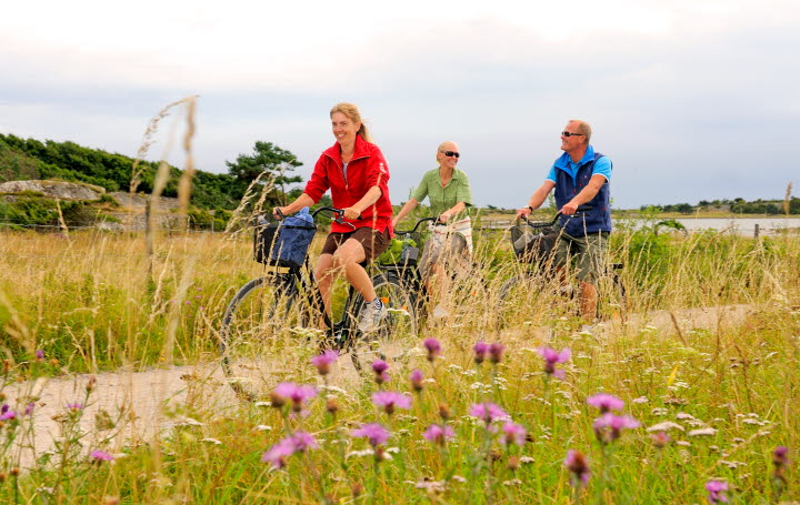 Three people are cycling along a gravel road at South Koster. The gravel road goes through a meadow with tall grass and wildflowers.