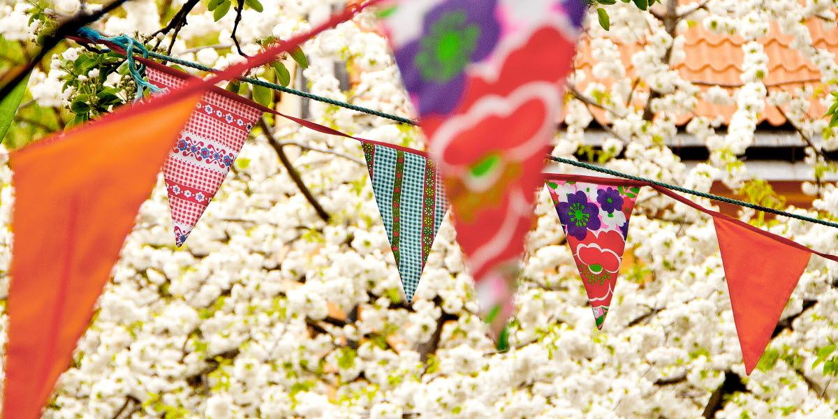 Flaggor hänger utomhus i olika färger från träd till träd. I bakgrunden finns ett vitt blommade träd.