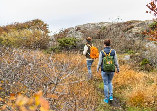 Människor som vandrar på Härmanö
