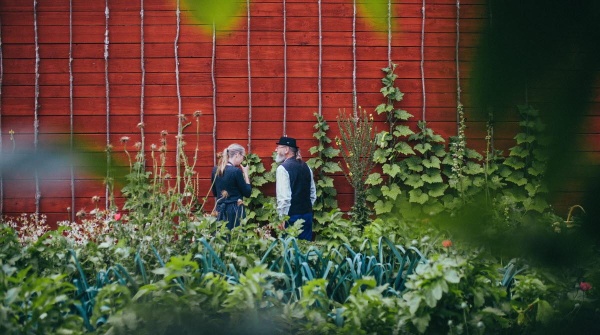 En dam och en Herre ute i den gröna slottsträdgården.