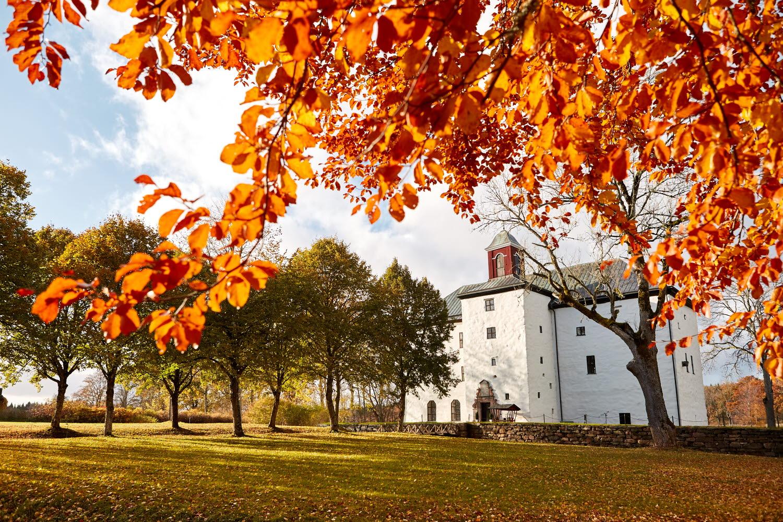 Autumn leaves in front of Torpa Stenhus - Photo Cred Jonas Ingman