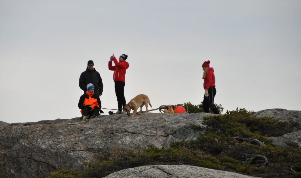 En grupp på fyra personer och två hundar står uppe på en berghäll.