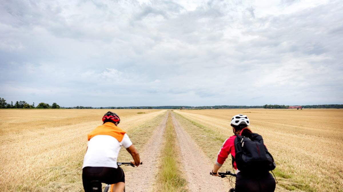 Två cyklister som cyklar på en grusväg genom öppna fält.
