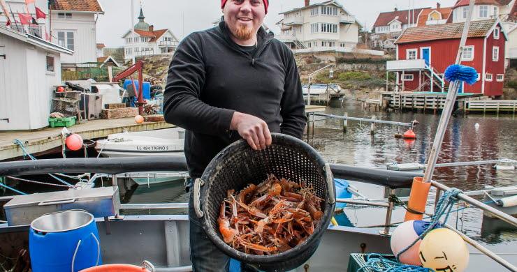Fiskaren Bobo Royson i Grundsund med kräftor