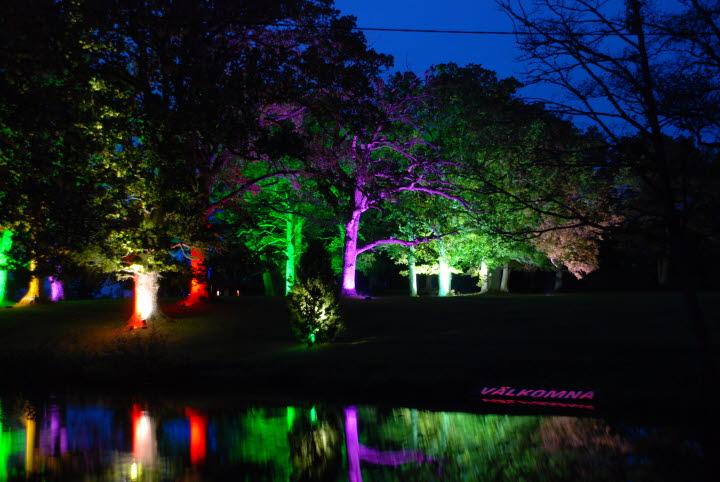 Ljus på träd i Nossan område under Nossan ljusfestival