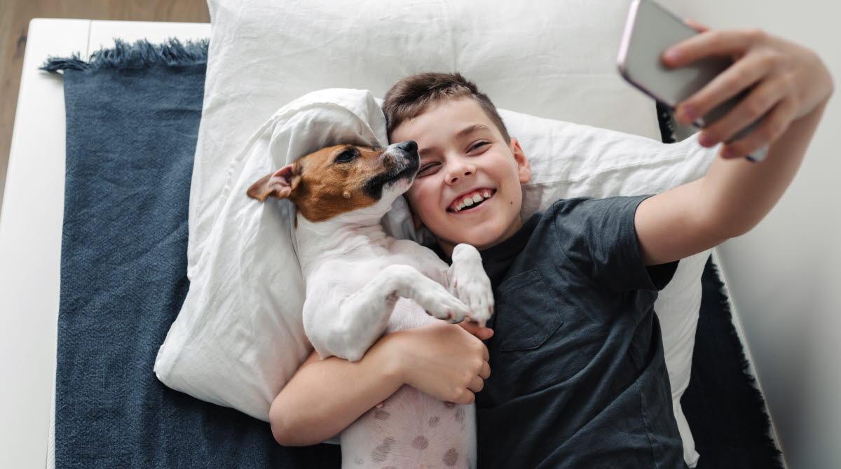 En ung pojke med hund i mysig säng.