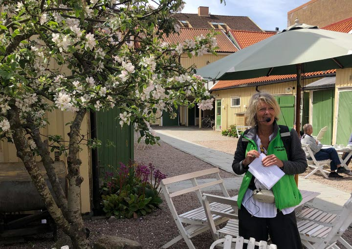 A woman standing outside by a tree with swedish fika on the table.
