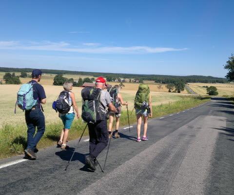 Fem personer med ryggsäckar som vandrar på en mindre asfaltsväg utmed grönskande gärden och blå himmel.