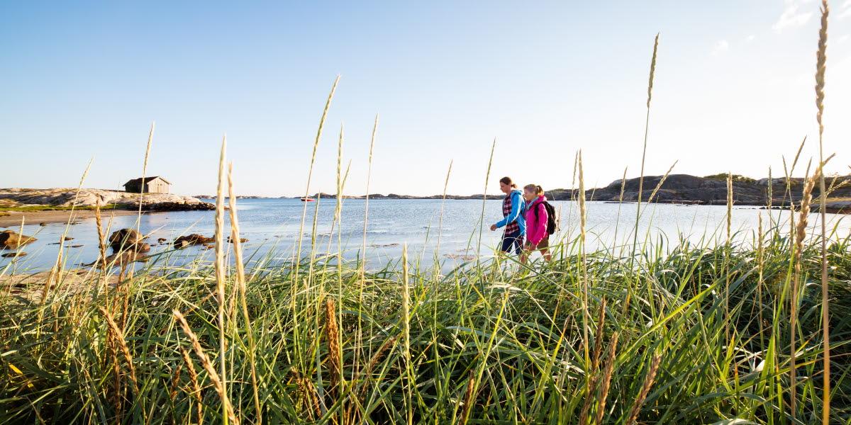 I förgrunden syns vass och högt gräs, I bakgrunden syns två personer som promenerar längst en strand på Sydkoster.