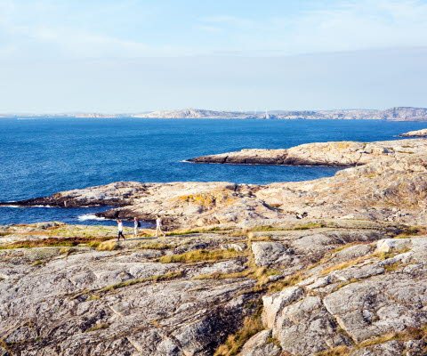 Grupp vandrar på klipporna ute vid Marstrandsfjorden.