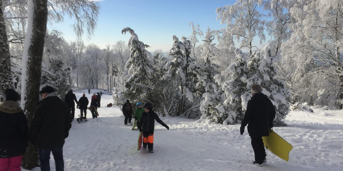 Vinterklädda personer går omkring i en pulkabacke i snön