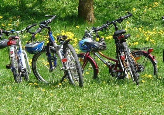 Bild på cyklar står på gräset.