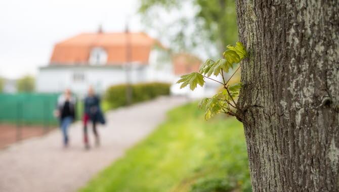 Tofta Herrgård, Kungälv