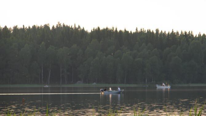 Båtar på stilla vatten under gösfisketävling i Lönern
