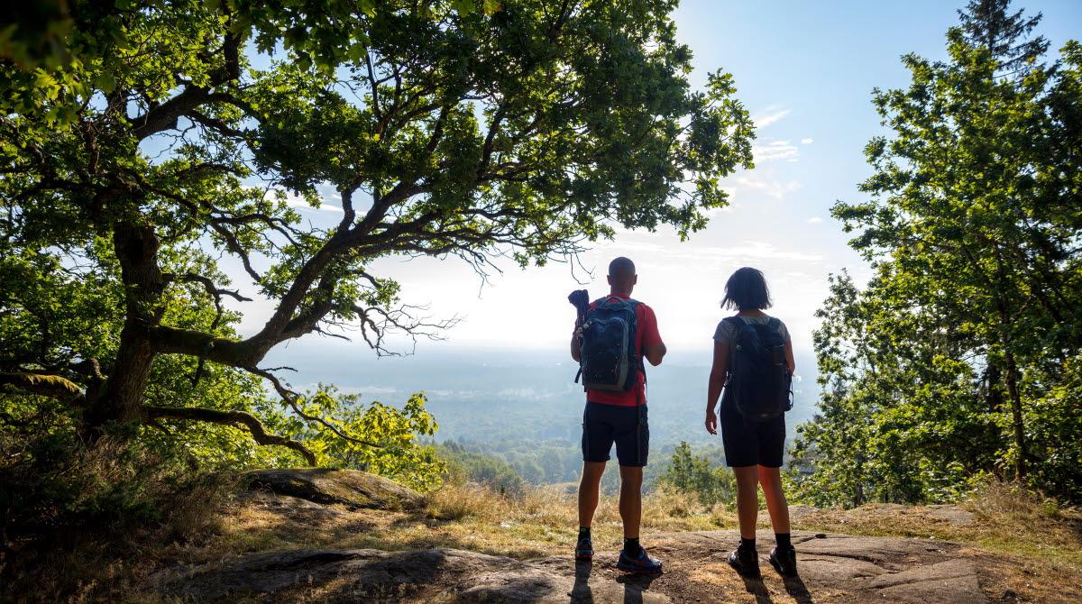 Två vandrare står vid kanten av ett berg i en skogsglänta och njuter av utsikten.