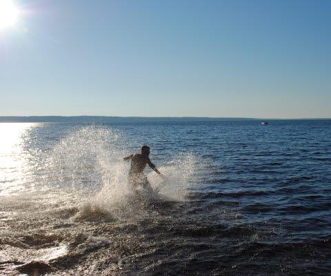 Vattenliv Sommar