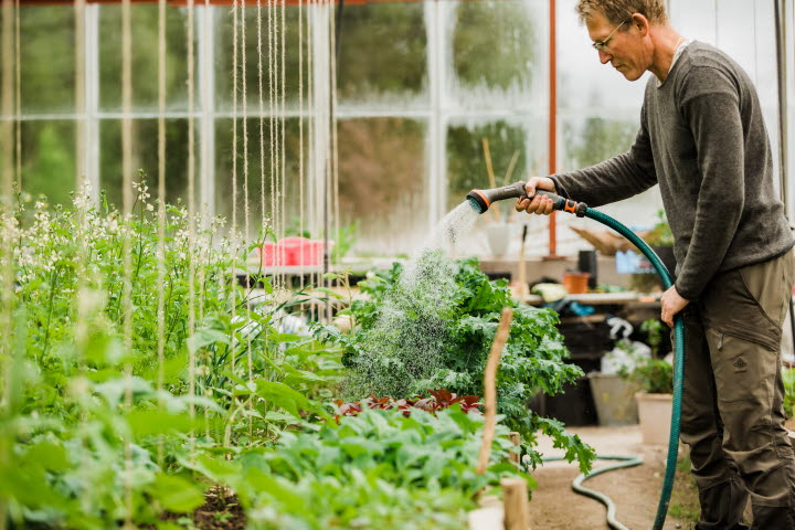 Trädgårdsguidning