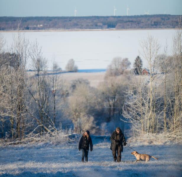 Två personer med hund promenerar i frostigt vinterlandskap med Hornborgasjön i bakgrunden