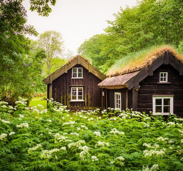 Åsle Tå, backstugor i brunt med gräs på taket. Lummig och grön natur runt omkring.