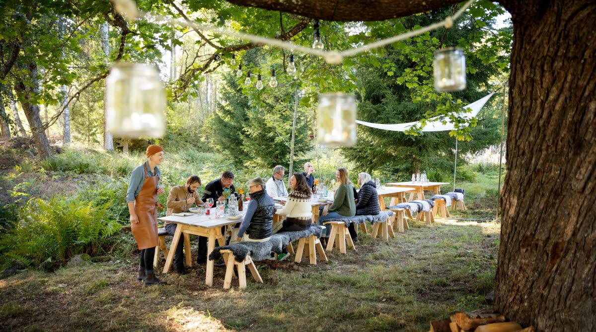 En grupp av människor sitter vid ett dukat långt träbord under ett stort träd. I trädet hänger ljuslyktor som kan tändas till kvällen.