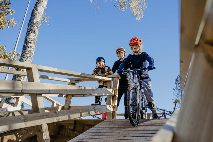 Mountain Bike at Lassalyckan