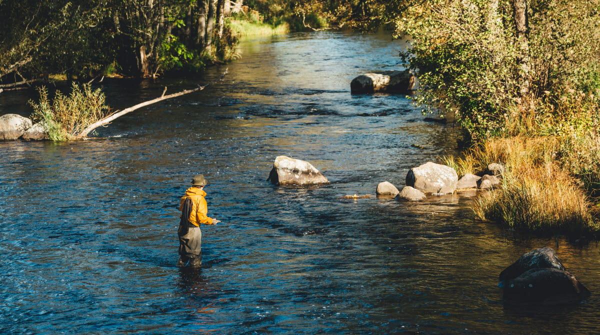 En fiskare står i vattnet och flugfiskar